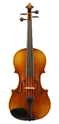 Otto Model 310 Violin - Feature