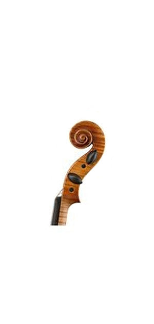 Wilfer V-50 Violin - Scroll