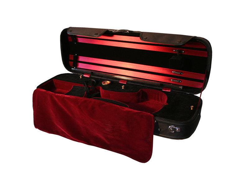 Bridge Aquila 4-String Electric Violin Outfit - Premium Case