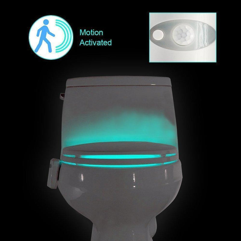 Hirundo 16-Color Motion Sensor LED Toilet Night Light