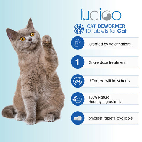 Lucico Dewormer for Cats and Kittens - 10 Tablets