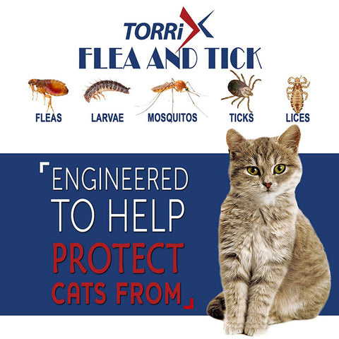 cat flea and tick collar, flea and tick collar for cats, kitten flea collar, cat flea tick collar, flea collar for cats, cat flea collar, flea collar for kittens