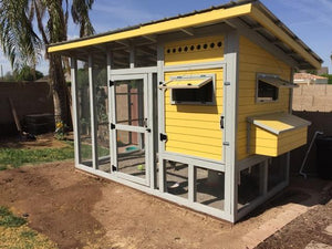 The Palace Chicken Coop Plans