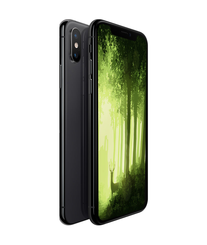 iPhone XS (64GB) Rymdgrå