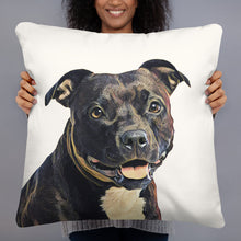 Load image into Gallery viewer, custom dog pillow