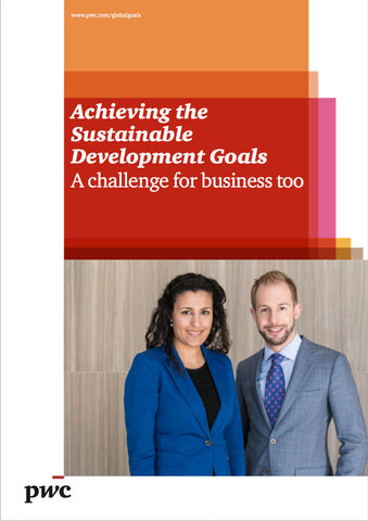Rapport: Achieving the Sustainable Development Goals - A challenge for business too