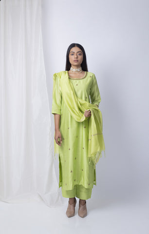 Pistachia Embroidered kurta set