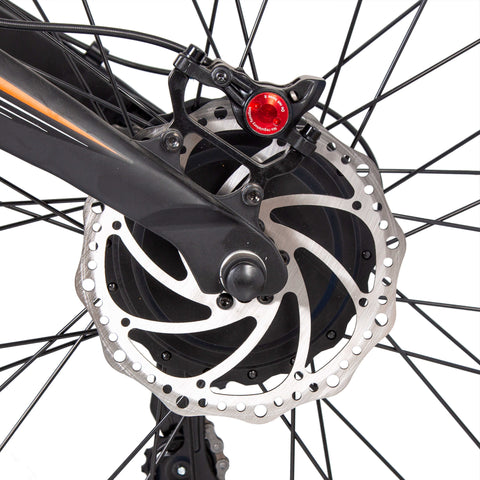 Hydraulic Disc Brakes Bison Ecotric