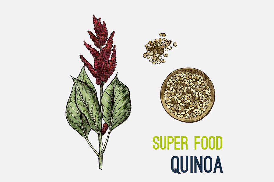 How To Make Quinoa Flour At Home And Where You Can Use It