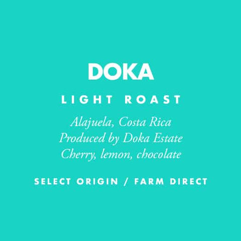 Costa Rica Doka - Barrington Coffee