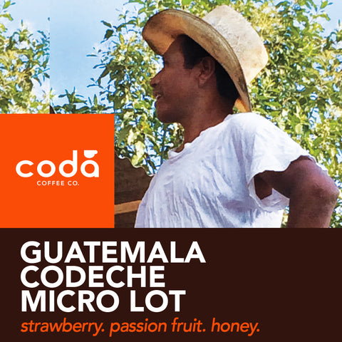 Guatemala Codeche FTO - Coda Coffee