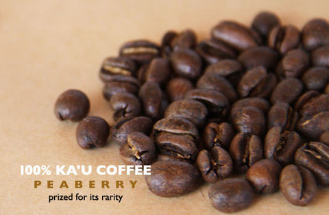 Ka'u Classic Peaberry - Rusty's Hawaiian Coffee
