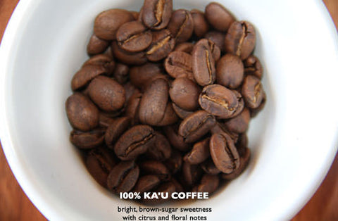 Ka'u Classic Medium Roast - Rusty's Hawaiian Coffee