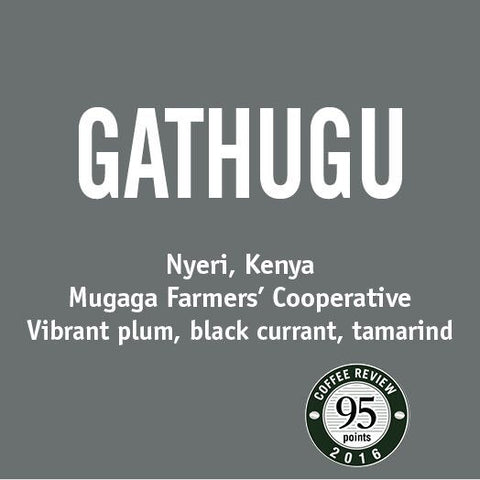 Kenya Gathugu - Barrington Coffee
