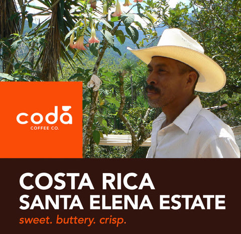 Costa Rica Santa Elena Estate - Coda Coffee