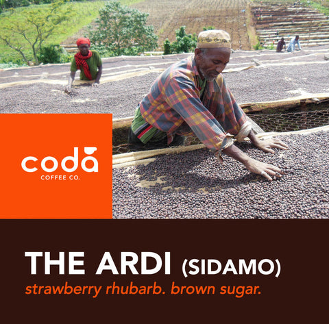 Ethiopia Ardi Natural Process - Coda Coffee