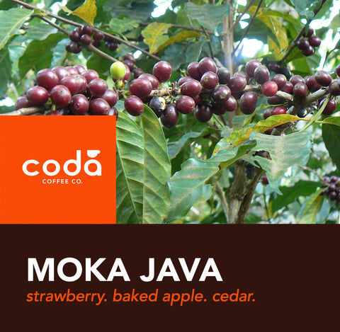 Coda Coffee - Moka Java Blend