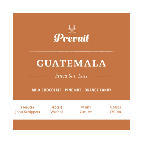 Guatemala Finca San Luis - Prevail Coffee