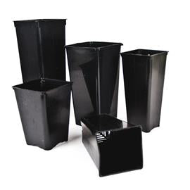 Square Pot Long VDL (9x9x19cm) 1 L