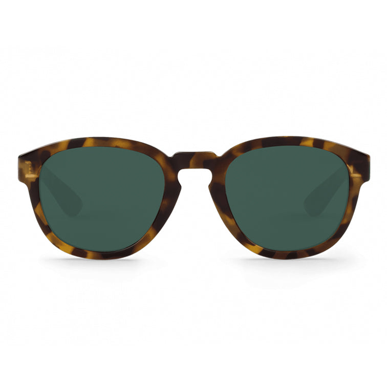 Peckham Sunglasses in High Contrast Tortoise