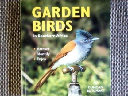 Garden Birds in Southern Africa - Duncan Butchart - EcoSolutions - Shop Now | South Africa