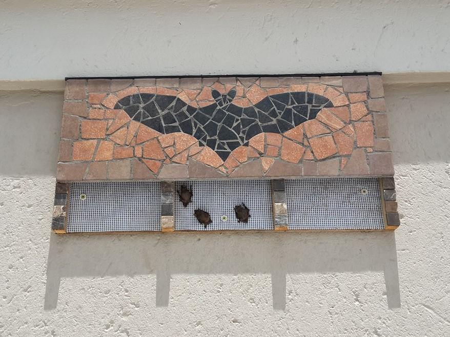 Mosaic Bat Box - EcoSolutions - Shop Now | South Africa