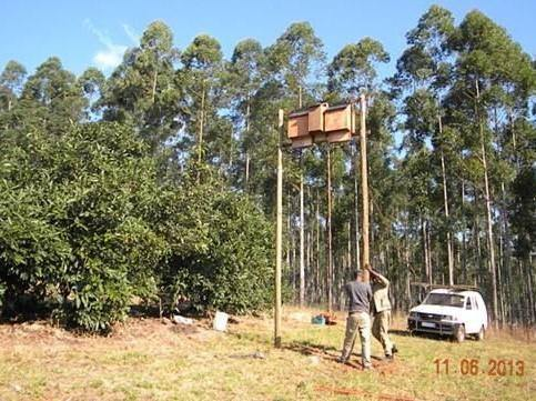 Agricultural Bat Consultation - EcoSolutions - Shop Now | South Africa