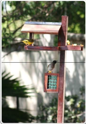 Freestanding Bird Feeders