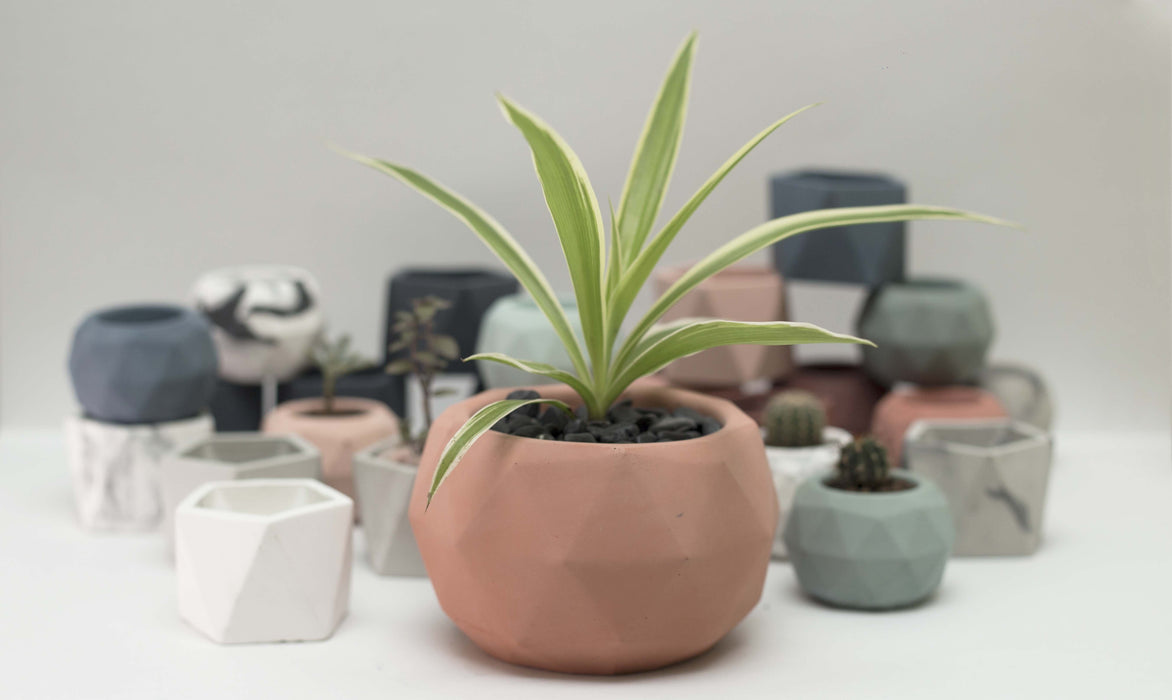 Estudio-Brutal-Small-Geo-Planter.