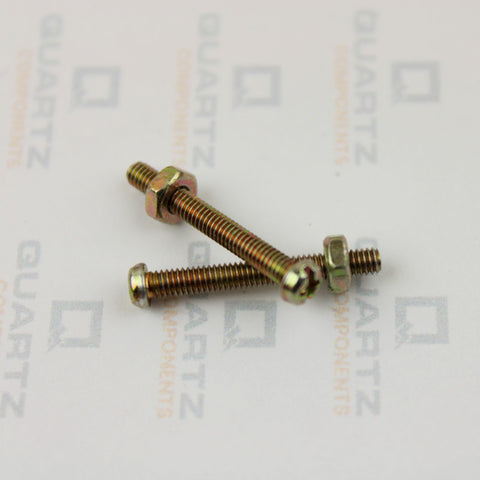 M2 Screw and Nut
