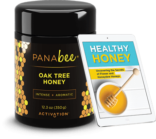 Panabee Oak Tree Honey Special Offer
