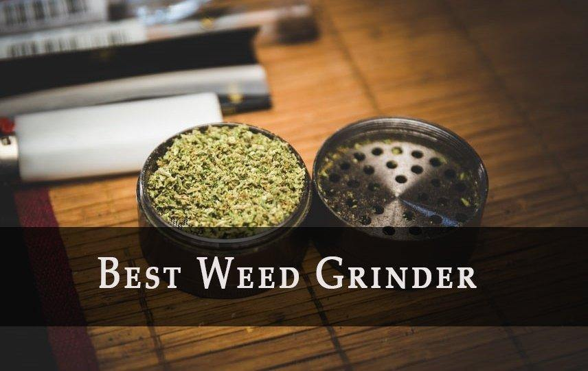 Guide to Finding the Best Weed Grinder