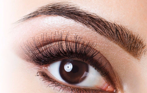 Eye Trio: Lash & Brow Tint with Shape (Save €5)