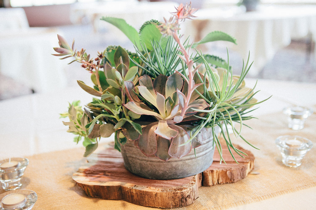 Succulents and wood blocks as a unique table centerpiece. | An Outdoor Wedding That's Simply Charming | Kennedy Blue