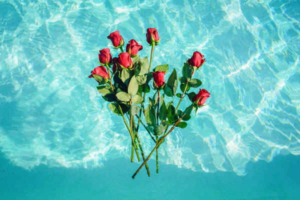 roses floating in pool | Best Backyard Wedding Ideas