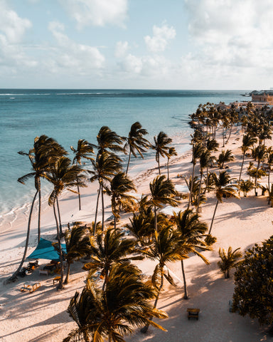 beach in Dominican Republic | The Best Destination Wedding Locations