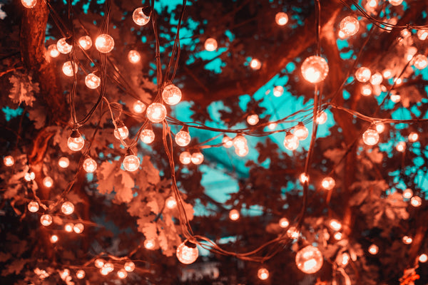 hanging lights | Best Backyard Wedding Ideas