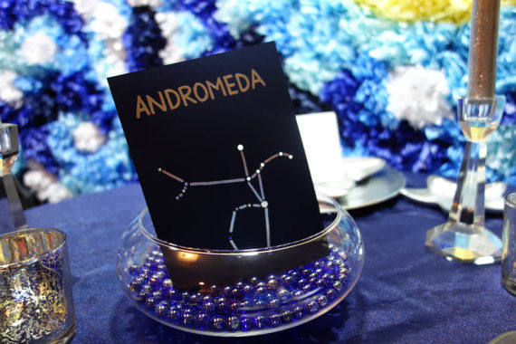 Use Astrology as your wedding theme! | Kennedy Blue