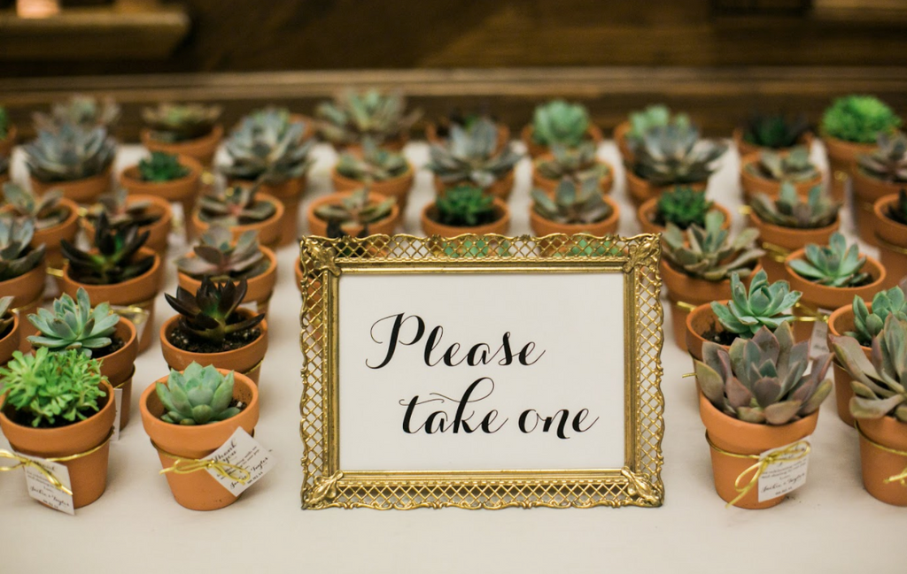 "Fun and cute wedding favors for your outdoor wedding! Customize this with sayings like ""let your love grow"" 