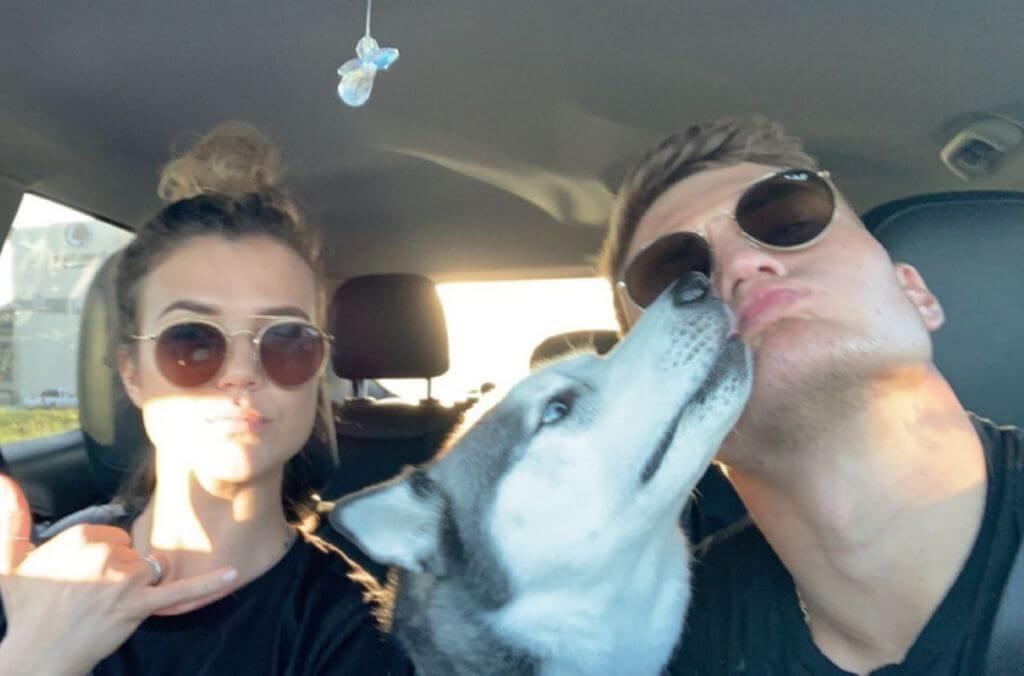 ultimate guide to traveling with your pet - OurCoordinates