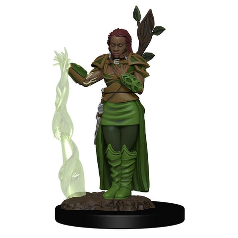 Human Female Druid - Premium Figure