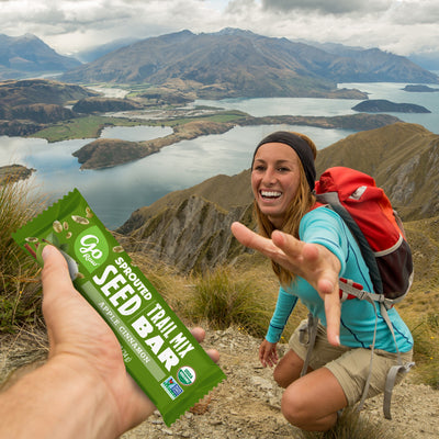 Apple Cinnamon Sprouted Trail Mix Bars - Box of 12 Bars
