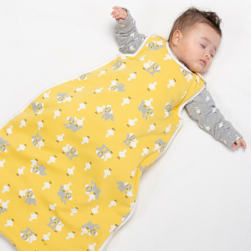 Kite Pup and Duck Sleep Bag