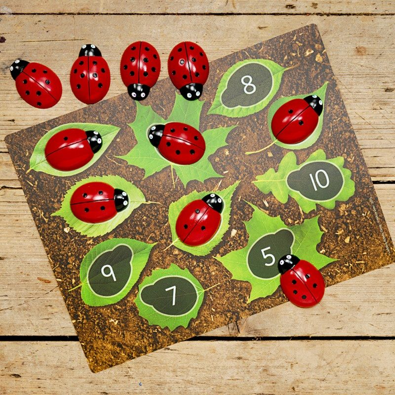 Ladybird Counting Kit - Small Eco Steps - Counting Games