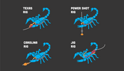 rigging chart for scorpion bait
