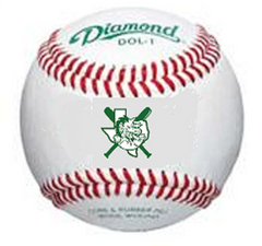 Official DYB Game Ball