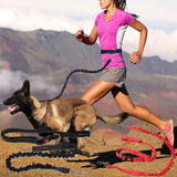 Pet Dog Running Leashes Hands Freely Great for Walking Dog Leash Rope with Reflective Jogging Dog Collars Leash CL109