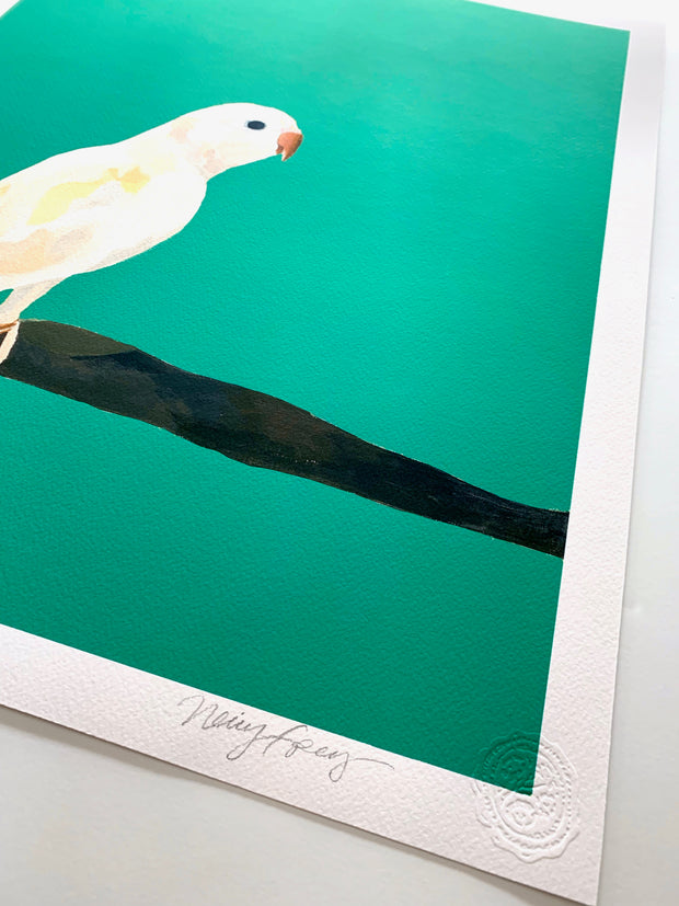Lucky On Emerald - Parrot Giclee