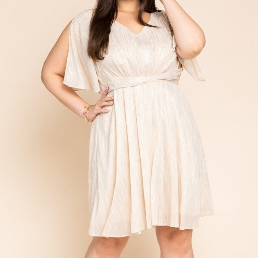 Metallic Ivory Dress PLUS