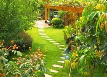garden pathway to your meditation space
